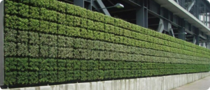 green-wall-irrigation